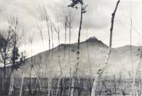 Monte Cassino [Courtesy of Mary Hamasaki]