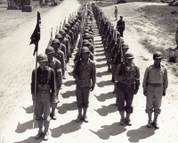 100th Battalion Soldiers in Training [U.S. Army Signal Corps]
