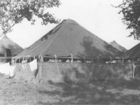 Tents at Camp McCoy before the barracks were finished. [Courtesy of Mary Hamasaki]