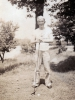 (1942) Eugene Kawakami golfing with friends from the 100th Infantry Battalion in West Salem, Wisconsin, in his bare feet.  [Courtesy of Joanne Kai]