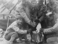 Taken Sept. 24, 1942 the day we left Old Camp McCoy to go to New Camp McCo.  Note tents brought down.  We built a fire in the can with wood and coal and gathered around it to keep warm.  Temperature was constantly around 37 degrees.  It was cold. L to R: myself, Yoneshige, Ikeno, Hirata, Yukio Takehara, Stanley Imamura, Haruo Hayakawa & Hirayama.  [Courtesy of Jan Nadamoto]