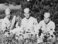 April 4, 1943 at _ Park, New Orleans, La, when we went out on a a weekned pass prior to coming out on maneuvers.  Extreme left is Tahachi Hirayama, Richard M. Yamada and myself.  The camera wasn't focused right, thus the blue flowers in the foreground is of poppies.  [Courtesy of Jan Nadamoto]