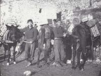 Stanley Hamamura with pack horses and mules [Courtesy of Fumie Hamamura]