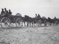 German Army traveling through Italy with wagons because they ran short of gas. [Courtesy of Fumie Hamamura]
