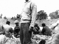 James Kawashima standing in middle of a field after maneuvers at Camp McCoy, Wisconsin [Courtesy of Alexandra Nakamura] Inscription: Boy, its hot