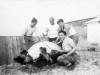 "S. Okuma, ""Heavy"" Koizumi, Tokuji Ono, and K. Iwashita prepare ""Clarence"" the Pig for a feast, Ship Island, Mississippi, 1943 [Courtesy of Leslie Taniyama] Inscription: Reverse: Ship Island - Jan '43 ""Clarence"" the Pig. S. Okama,(Okuma) ""Heavy"" Koizumi, Yours truly, K. Iwashita"