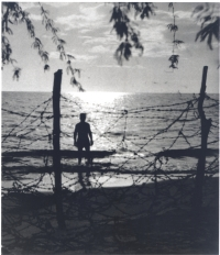 Barbed wire covers a Hawaiian beach after the bombing of Pearl Harbor, 1942. [Courtesy of Ruth Oian Pratt, Bishop Museum]
